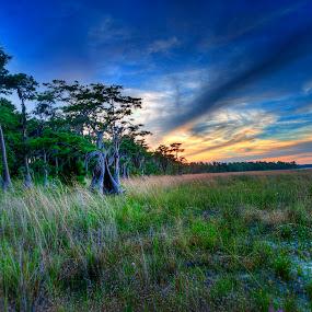 by Jay Kleinrichert - Landscapes Prairies, Meadows & Fields