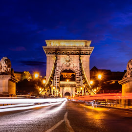 Light Trails by Luis Silva - City,  Street & Park  Street Scenes ( hungary, budapest, blue hour, chain bridge, light trails, long exposure, bridge )