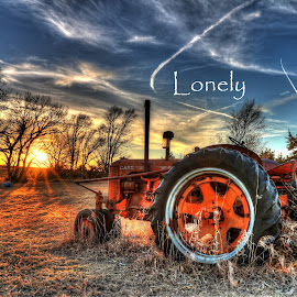 Lonely by Casey Mitchell - Typography Captioned Photos