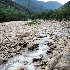 Saeorak-San by Jenni Ertanto - Landscapes Mountains & Hills ( water, mountain, nature, landscape, river )