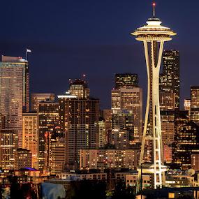 Seattle Skyline by Ruth Sano - City,  Street & Park  Skylines ( space needle, skyline, seattle, night, nightscape, city at night, street at night, park at night, nightlife, night life, nighttime in the city,  )
