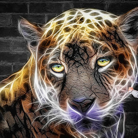 Leopard Feature by Shannon Rogers - Digital Art Animals