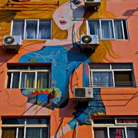 Wall Art by Francisco Little - Buildings & Architecture Other Exteriors ( art, mural, china, painting )