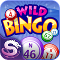 Wild Bingo - FREE Bingo+Slots APK for Bluestacks