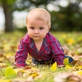 Maintain Eye Contact by Sarah Sullivan - Babies & Children Children Candids ( #sarahsullivanphotography, #cute as, #glen innes, #leaves )
