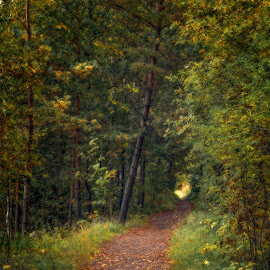 by Bojan Bilas - City,  Street & Park  City Parks ( nature, suomi, finland, long exposure, landscape, rauma )