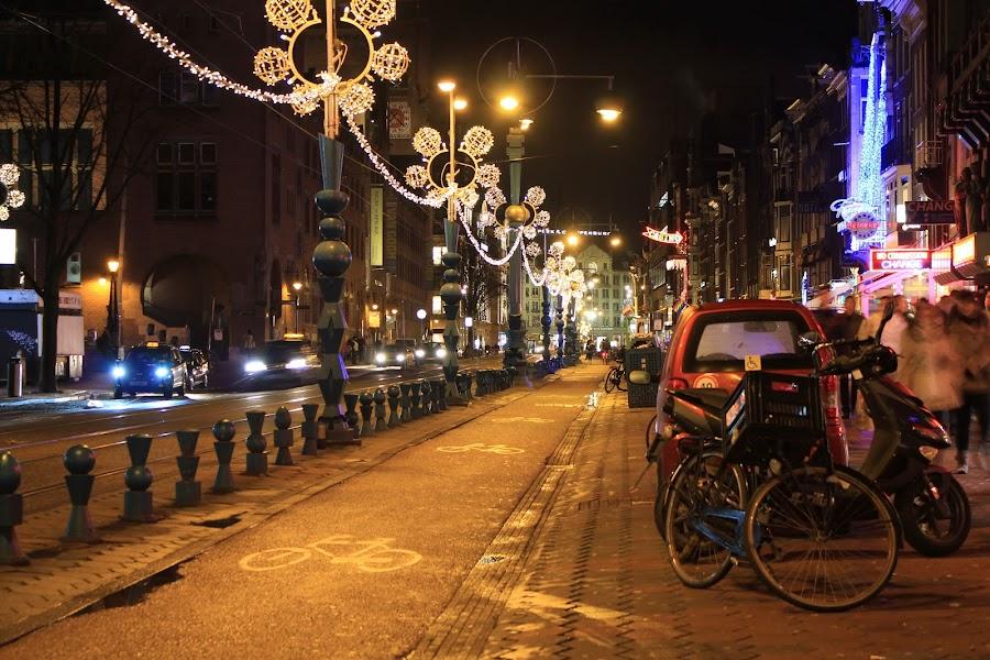 Amsterdam by Davor Kapetan - City,  Street & Park  Street Scenes