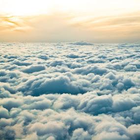 Above the Clouds by Joe Boyle - Landscapes Sunsets & Sunrises ( clouds, sky, plane, sunset, cloud, golden )