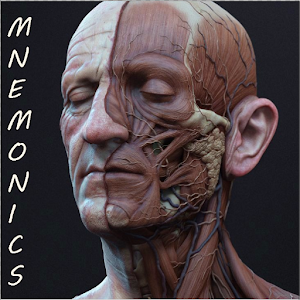 Download Medical Mnemonics APK