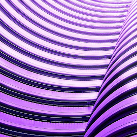 Wave Wall by Justin Lee - Abstract Patterns ( swirling, abstract, vertical, curving, lobby, swirl, no person, art, purple wave, repeating pattern, indoors, architecture, stripes, wave wall, interior design, inspiring, color image, color, wave, looking up, curved, architectural design, design, wall, inspirational,  )