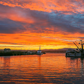 Monterey Morning by Kathy Suttles - Landscapes Travel