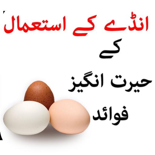 Anda ky Faide (app)