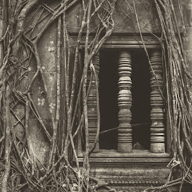 Beng Melea by Patrick Albicker - Buildings & Architecture Places of Worship ( temple, 2018, cambodge, bang melea, asia, historical, khmer, asie, angkor wat, travel photography, cambodia, siem reap )