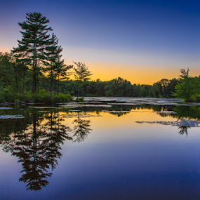 Fawn Lake Reflection by Wenjie Qiao - Landscapes Forests ( sunset, fawn lake )