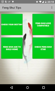 Feng Shui Tips - screenshot