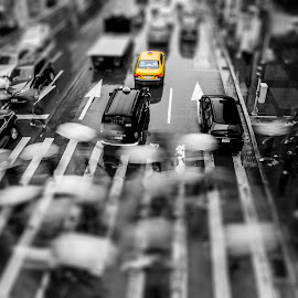 Taipei by 3rd eye Monster - City,  Street & Park  Street Scenes