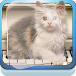 Cat Piano Play Live Wallpaper APK Image