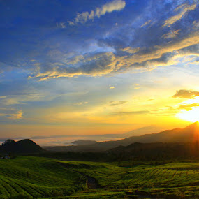 Morning in Subang by Budiana Yusuf - Landscapes Travel ( indonesia, west java, sunrise, travel, landscape, morning, subang )
