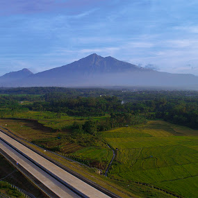 Highway and Paddy Fields by Robby Kurnia - Landscapes Prairies, Meadows & Fields