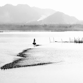 My Country by Huynh Phuc Hau - Landscapes Waterscapes ( waterscape, viet nam, landscape, an giang )