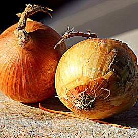 Onion by Renata Ivanovic - Food & Drink Fruits & Vegetables ( onions, food, cooking, vegetable, close up )