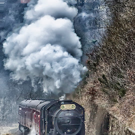 Full Head of Steam by Dez Green - Transportation Trains ( railway, railroad, steam train, nymr, train, relic, smoke, historic, steam )