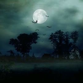 Haunted House on the Hill by Karen Carter Goforth - Public Holidays Halloween ( hill, foggy, moon, spooky, house, haunted, halloween,  )