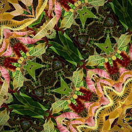 DIGITAL croton arrangement by Marvin Hurlston - Illustration Abstract & Patterns ( hedge, colorful leaves, leaves, garden plants, croton, random pattern )