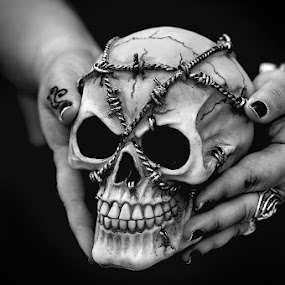 Skull by Cristina Mestre - News & Events World Events