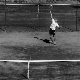 Serving by Nenad Borojevic Foto - Sports & Fitness Tennis ( shadow, web, tennis, man, shadows, tennis ball )