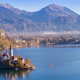 Lake Bled and the church in Slovenia from the hill by Péter Mocsonoky - Landscapes Mountains & Hills ( calm, famous, europe, mountain, travel, architecture, landscape, island, alpine, nature, autumn, idyllic, bled, julian, alps, water, hill, building, church, beautiful, white, romantic, forest, lake, tourism, scenic, boat, destination, amazing, landmark, tourist, catholic, tower, european, vacation, slovenia, fall, background, outdoor, scene, view, scenery )