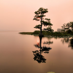 by Charles Richardson - Landscapes Waterscapes