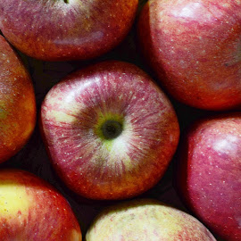 Apples by Pradeep Kumar - Food & Drink Fruits & Vegetables