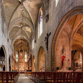 Inside Saint Pierre Church, Avignon. by Jiri Cetkovsky - Buildings & Architecture Public & Historical ( interior, church, anignon, historic, interior historic )