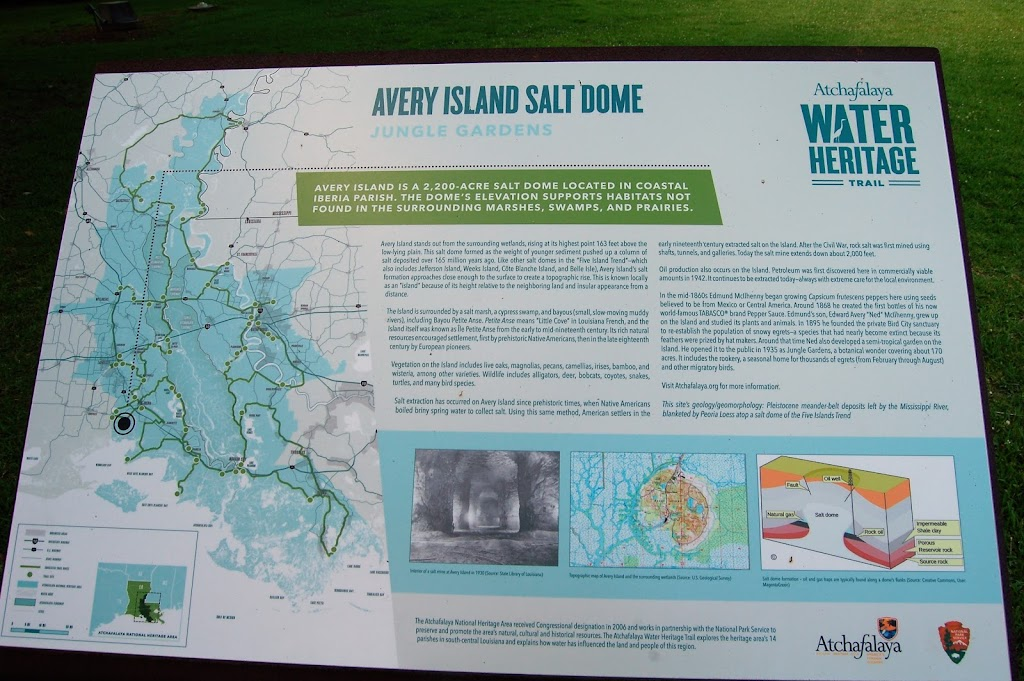 Avery Island stands out from the surrounding wetlands, rising at its highest point 163 feet above the low-lying plain. This salt dome formed as the weight of younger sediment pushed up a column of ...