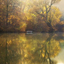 20171111-DSC_3641 by Zsolt Zsigmond - Landscapes Waterscapes ( reflection, autumn, colors, fall, trees, morning, light )