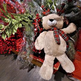 by Denise O'Hern - Public Holidays Christmas