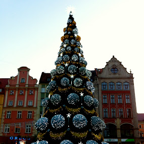 wroclaw t by Worowsky Papa - Public Holidays Christmas ( pwcholidays, christmas, sea, night, wroclaw, light )