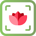 PlantFinder - Flower & Plant Identification APK