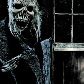 A Drink, Perhaps? by Carl Testo - Public Holidays Halloween ( window, witch, halloween )