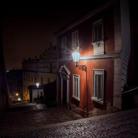 Castle stairs by Robert Grim - City,  Street & Park  Historic Districts ( europe, czech, czech republic, morning, historic, fotograf, city )