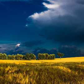 After the Storm by Emanuele Zallocco - Landscapes Prairies, Meadows & Fields ( hills )