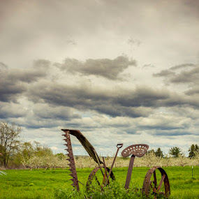 Old Farm Equipment by Jeff McVoy - Artistic Objects Antiques ( field, farm, seat, grass, equipment, mower, farming, skies )