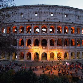 Colosseum by Davide Labianca - City,  Street & Park  Historic Districts ( canon, colosseum, rome, sunset, lazio, cityscape, architecture, italy, beautiful city, city )