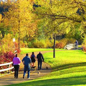 Go for a walk by Pamela Zeng - City,  Street & Park  City Parks