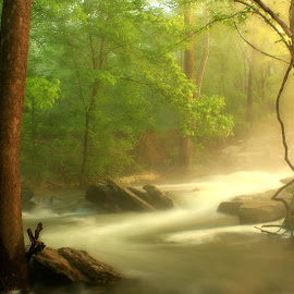 FIRST LIGHT OF DAWN by Dana Johnson - Landscapes Waterscapes ( dawn, waterscape, creek, forest, landscape, rocks, river )