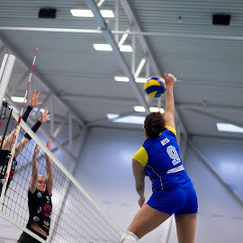 Smash by Flemming Nielsen - Sports & Fitness Other Sports ( brøndby, hit, volleyball, smash, indoor volleyball )