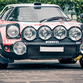 Stratos by Darrell Evans - Transportation Automobiles ( wheels, black, mid-engined, transport, automobile, outdoor, tipo 829, classic, car, lancia, stratos, lights, rally, sports car )