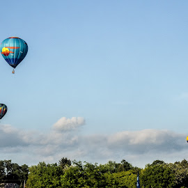 Balloons Just Above the Treeline by Jason Lockhart - Transportation Other ( wisconsin, trio of hot air balloons, waterford, hot air balloons, balloonfest )