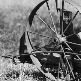 The Wheel has Spoke' n by Emily Melody - Instagram & Mobile iPhone ( farm, wheel, black and white, antique, spokes )